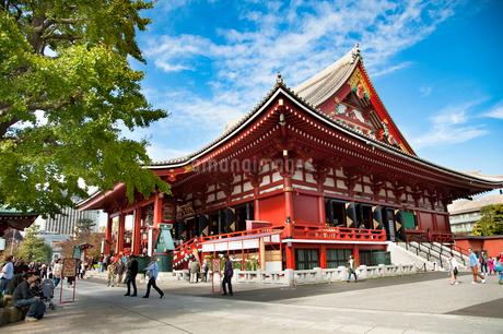 浅草寺の写真素材 [FYI01765661]