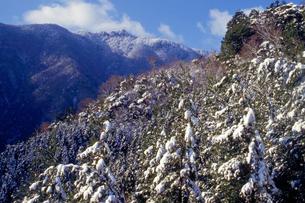雪の祖母山の写真素材 [FYI01765746]