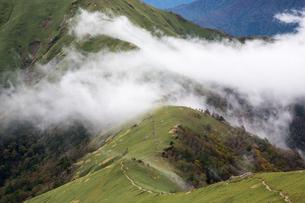 四国剣山の尾根を流れる雲の写真素材 [FYI01765789]