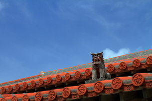 青空に映える民家の赤瓦とシーサー(沖縄県)の写真素材 [FYI01765797]