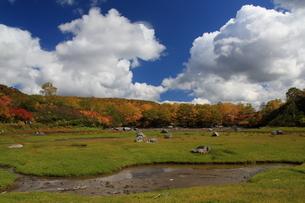 秋の空沼の写真素材 [FYI01765872]