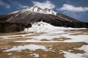 残雪の桝水高原より大山の写真素材 [FYI01765912]