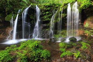 猿壷の滝の写真素材 [FYI01766038]