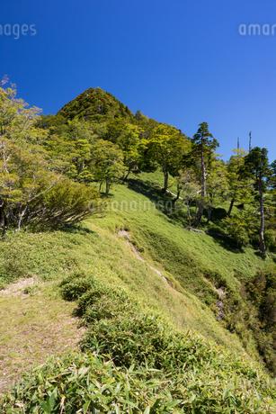 奈良県 大峰山 水太覗付近より大普賢岳を望むの写真素材 [FYI01766084]