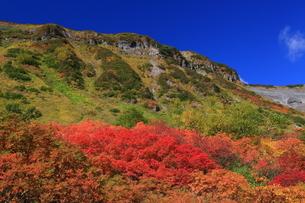 式部沼より平ヶ岳を望むの写真素材 [FYI01766108]