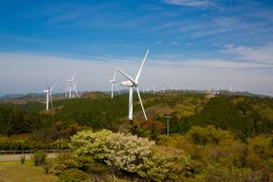 青山高原の風力発電施設の写真素材 [FYI01766191]
