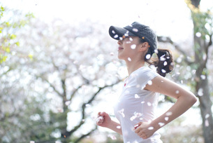 桜の下でランニングをする女性の写真素材 [FYI01766202]