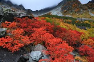 秋の涸沢(北アルプス)の写真素材 [FYI01766232]