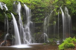 猿壷の滝の写真素材 [FYI01766247]