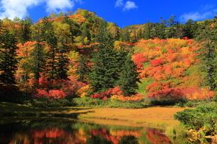 秋の滝見沼の写真素材 [FYI01766254]