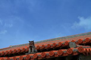 青空に映える民家の赤瓦とシーサー(沖縄県)の写真素材 [FYI01766280]