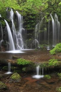 猿壷の滝の写真素材 [FYI01766293]
