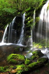 猿壷の滝の写真素材 [FYI01766297]