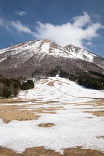 残雪の桝水高原より大山の写真素材 [FYI01766305]