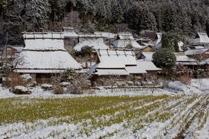 京都府 美山町かやぶきの里の雪景色の写真素材 [FYI01766414]