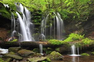 猿壷の滝の写真素材 [FYI01766466]