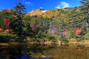 秋の土俵沼の写真素材 [FYI01766544]