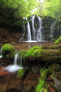 猿壷の滝の写真素材 [FYI01766551]