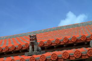 青空に映える民家の赤瓦とシーサー(沖縄県)の写真素材 [FYI01766700]