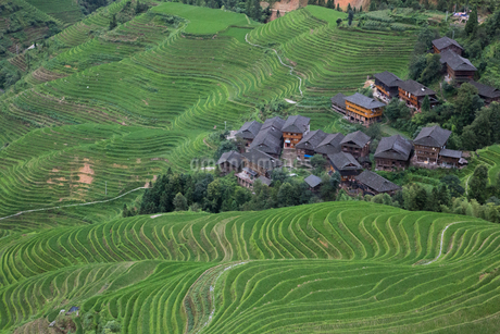 中国・龍勝の棚田風景の写真素材 [FYI01766863]