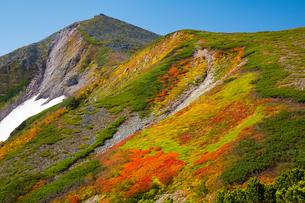 北海道 大雪山 小泉岳の紅葉の写真素材 [FYI01766954]