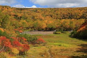 秋の空沼の写真素材 [FYI01767028]