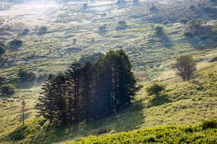 霧ヶ峰高原の朝の写真素材 [FYI01767122]