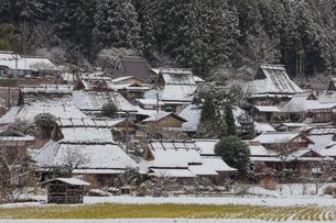 京都府 美山町かやぶきの里の雪景色の写真素材 [FYI01767198]