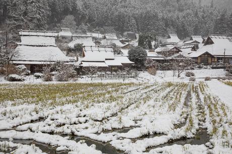 京都府 美山町かやぶきの里の雪景色の写真素材 [FYI01767286]