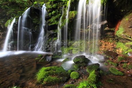 猿壷の滝の写真素材 [FYI01767494]