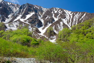 新緑と残雪の伯耆大山の写真素材 [FYI01767676]