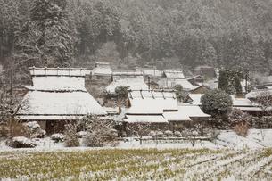 京都府 美山町かやぶきの里の雪景色の写真素材 [FYI01767867]