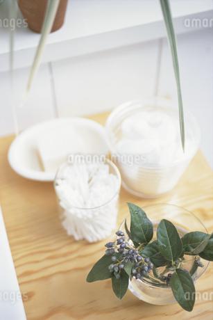 綿棒と石鹸と植物の写真素材 [FYI01767893]