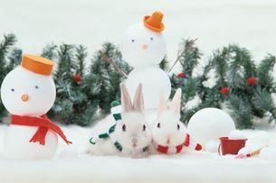 雪だるまとミニウサギの写真素材 [FYI01768011]
