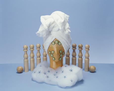 タオルを巻いてキュウリパックをするプーペの写真素材 [FYI01768324]
