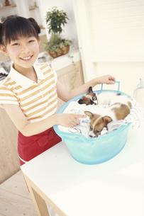 女の子と洗濯物カゴに入る犬の写真素材 [FYI01768417]
