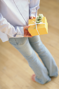 後ろ手にギフトボックスを持つ女性の写真素材 [FYI01768471]