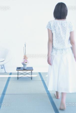 畳を歩く女性後ろ姿の写真素材 [FYI01768473]