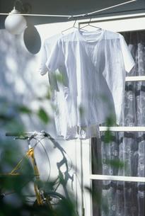 庭のロープに干した白いTシャツ2枚の写真素材 [FYI01768592]