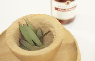 植物の実と木の器の写真素材 [FYI01769487]