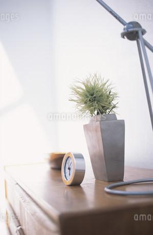 木目のキャビネットの上に置かれた時計や植物の写真素材 [FYI01770040]