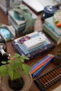 机の上のグリーンやビジネス小物の写真素材 [FYI01770641]