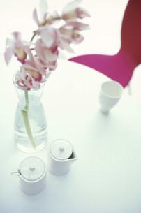 シュガーポットとミルクポットとシンビジュームの花の写真素材 [FYI01770739]