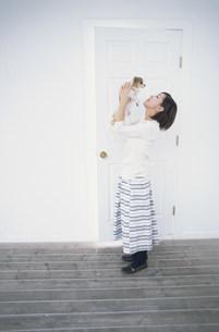 ドアのそばで犬(チワワ)を抱き上げる女性の写真素材 [FYI01771351]