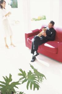 赤いソファに座る犬を抱いた日本人男性の写真素材 [FYI01771452]