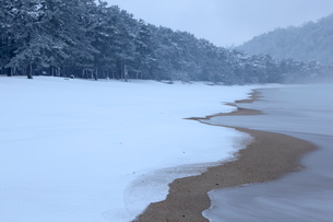 気比の松原雪景色の写真素材 [FYI01772849]