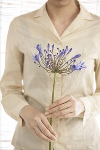 胸の前で花を持つ女性の写真素材 [FYI01774546]