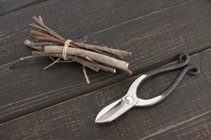 剪定ばさみと枝の写真素材 [FYI01774728]