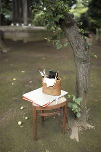 庭に置いた絵画セットの写真素材 [FYI01774952]