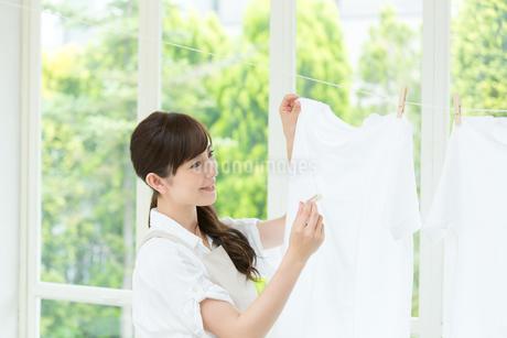 洗濯ものを干す主婦の写真素材 [FYI01775530]